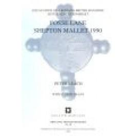 Fosse Lane, Shepton Mallet 1990